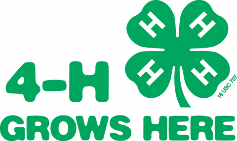 4 H Youth Development Warren County